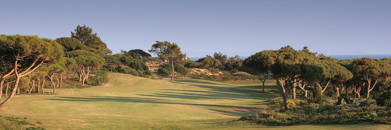 Golfe - Arhcesmo